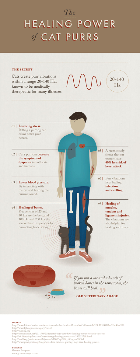The Healing Power of Cat Purrs - infographic by Gemma Busquets